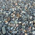 海岸の小石