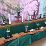 京都蘭友の会
