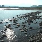 姫川の河口