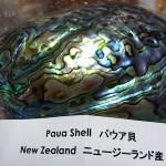京都ミネラルショー・ふしぎ石大発見展