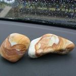 須沢海岸の薬石