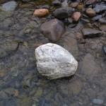 翡翠原石 ? 小滝川