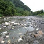 青海川下流
