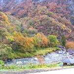 小滝川ヒスイ峡の紅葉