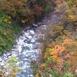 小滝川上流の紅葉