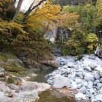 小滝川下流の紅葉
