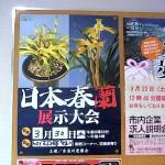春蘭展案内ポスター