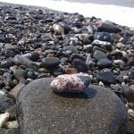 成果 小さな桃簾石