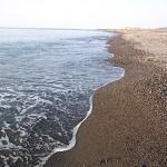 穏やかな須沢海岸