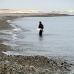 宮﨑海岸の翡翠ハンター