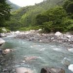 小滝川の清流