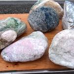 大きな桃簾石