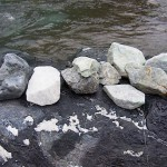 青海川の成果