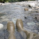 青海川の涼