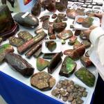 石ふしぎ大発見展
