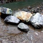 青海川の成果 1