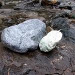 青海川の成果 2 右はロディン岩