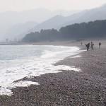 翡翠ハンター 宮﨑海岸