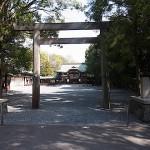 名古屋市野鳥生息状況調査 氷上姉子神社