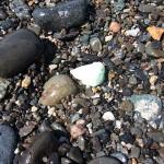 打ち上げられた翡翠 須沢海岸