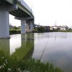 平野池 氷上姉子神社