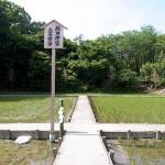 護神田(大高斎田)