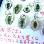 名古屋骨董祭  2014,8