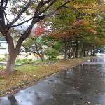 宮﨑海岸の駐車場