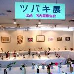 ツバキ展 名古屋椿協会