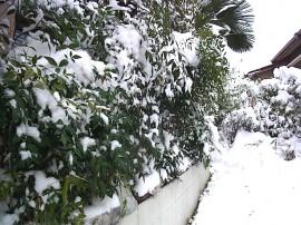雪景色 我が家