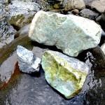 青海川の成果 3/4