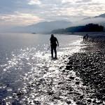 宮崎海岸の翡翠ハンター