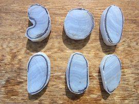 勾玉 垂飾 青縞メノウ