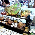 石ふしぎ大発見展 2018 京都ショー