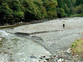 翡翠ハンター 小滝川の河原