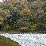 小滝川の紅葉