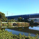 名古屋市野鳥生息調査 2 2019.11.12