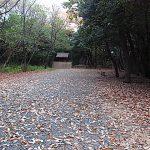 名古屋市野鳥生息調査 5,6 2019.12.19,25