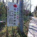 名古屋市野鳥生息調査 11 2020.2.14