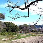 名古屋市野鳥生息調査 12 2020.2.24
