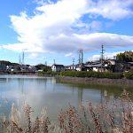 名古屋市野鳥生息調査 14 2020.3.11