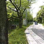 名古屋市野鳥生息調査 18 2020.4.24