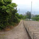 名古屋市野鳥生息調査 19 2020.5.6