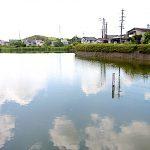 名古屋市野鳥生息調査 19 2020.5.20