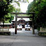 名古屋市野鳥生息調査 25 2020.6.26