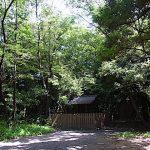 名古屋市野鳥生息調査 23 2020.6.5