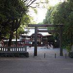 名古屋市野鳥生息調査 25 2020.6.17