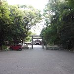 名古屋市野鳥生息調査 28 2020.8.7