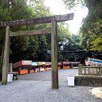 名古屋市野鳥生息調査 33 2020.10.4
