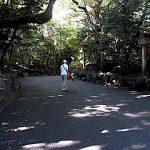 名古屋市野鳥生息調査 34 2020.10.11